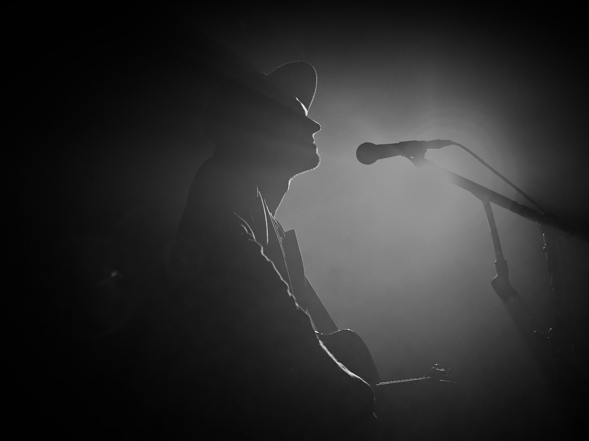 Interview with The Veils
