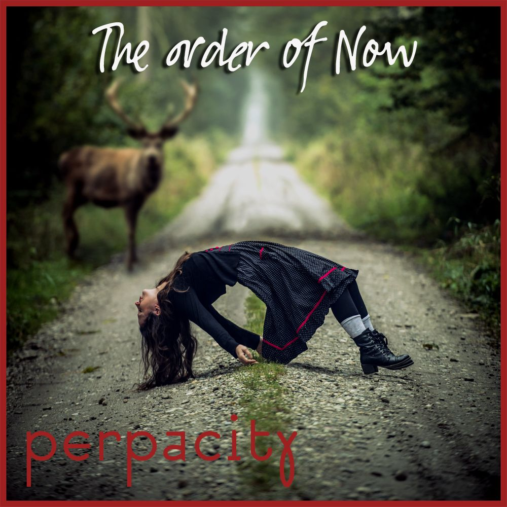 "Perpacity's new album ""The order of Now"" - exclusive review"