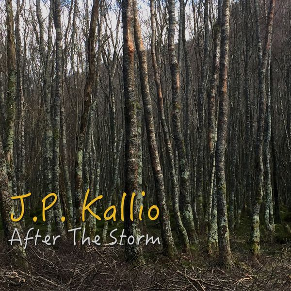 "Review: J.P. Kallio ""After The Storm"""